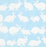 Rabbit hutch blue